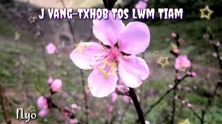 J Vang - Txhob Tos Lwm Tiam