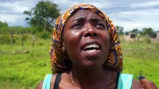 Zimbabwe gospel music :vanomirira jehovah (official video) 2020