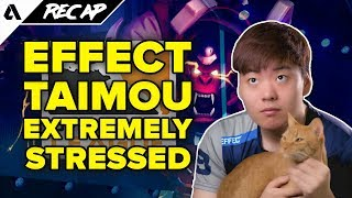 Effect Returns To Korea & Taimou Visits Hospital - Dallas Fuel Players Are Stressed | Akshon Recap