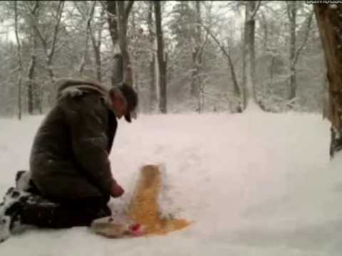 The best deer feeder ever!!!