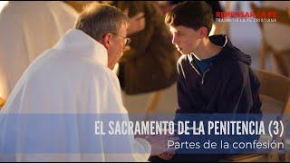 Sacramento de la Penitencia (3) I Partes de la Confesión