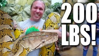 GIANT SNAKE AND LOTS OF SNAKE BITES!!! | BRIAN BARCZYK thumbnail