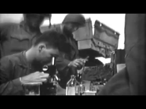 Marine Casualties On Iwo Jima, 03/04/1945 (full)