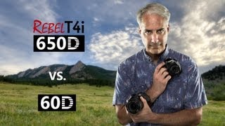 Canon T4i/650D vs 60D Which One To Buy?