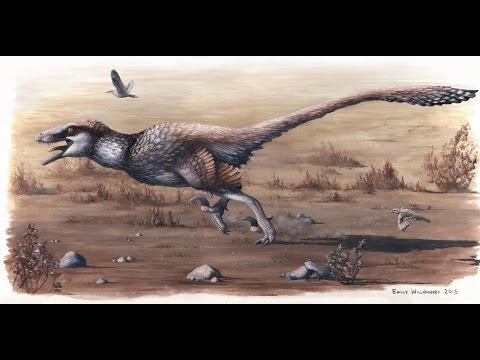 dakota raptor tribute