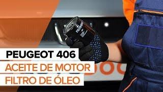 Vea una guía de video sobre cómo reemplazar PEUGEOT 406 Break (8E/F) Pastilla de freno