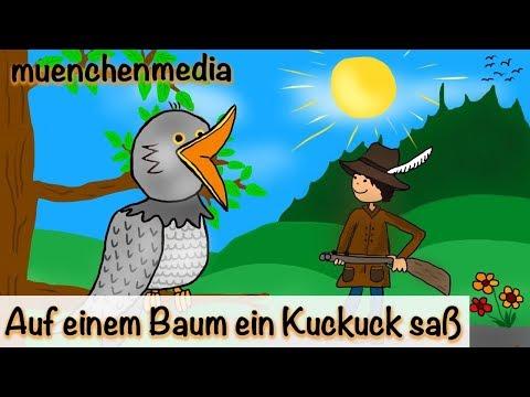 🎵 Auf einem Baum ein Kuckuck saß - Kinderlieder deutsch - muenchenmedia