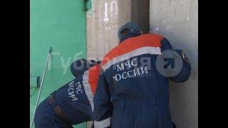 Спасательную операцию развернули в Хабаровске ради щенка. Mestoprotv