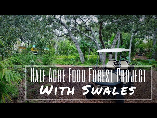 Half Acre Food Forest Project WITH SWALES!