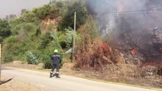 Violent incendie à la gare de Carbuccia