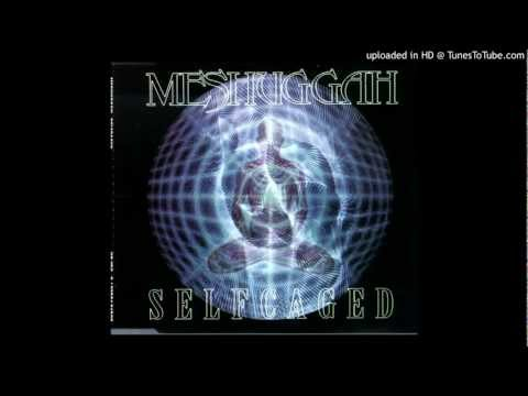 Meshuggah - Inside What's Within Behind (Selfcaged)