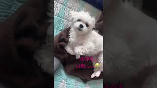 210215  lovelyz jisoo instagram story  러블리즈 서지수 인스타 스토리01~02…