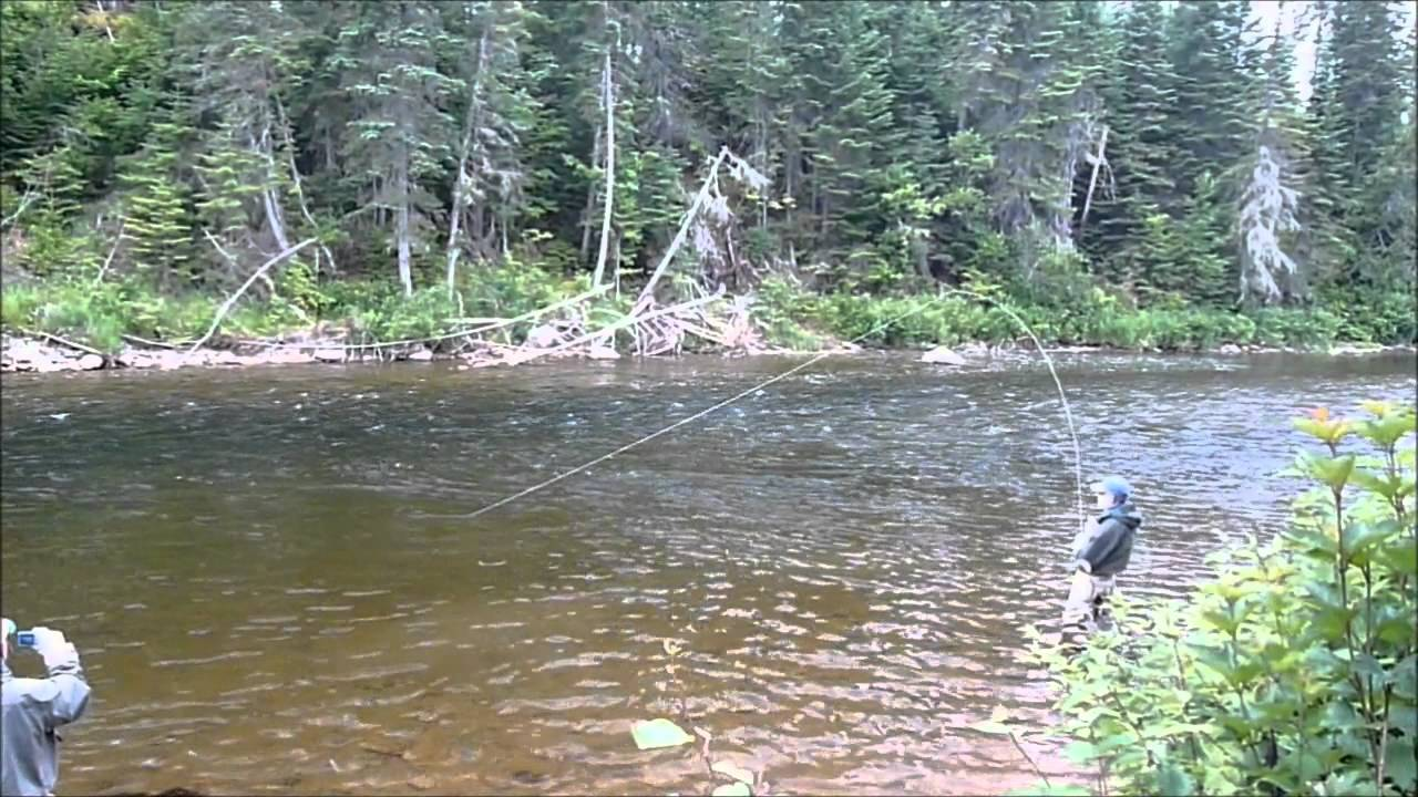 Gaspe quebec fly fishing for salmon youtube for Fishing in quebec