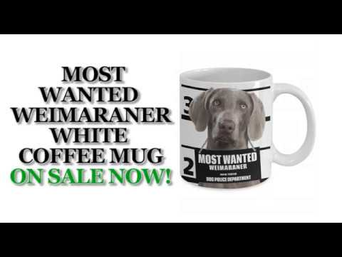 Most Wanted Weimaraner – 11oz White Ceramic Coffee Mug