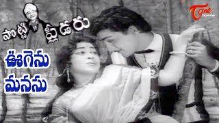 Potti Pleader Songs - Oogenu Manasu - Geethanjali - Sobhan Babu