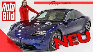 Porsche Taycan (2019): Auto - Sitzprobe - Test