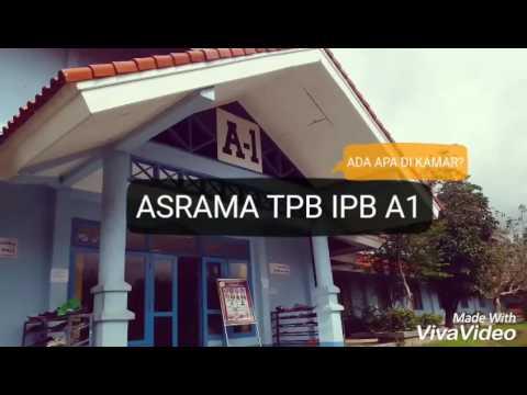 ASRAMA TPB IPB A1 | ADA APA DI KAMAR?