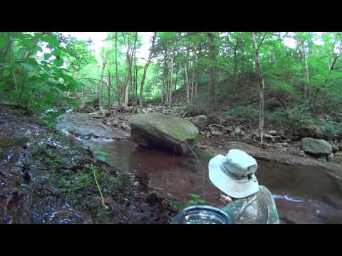 Catskills, NY, Biscuit Brook Fly fishing, map link below