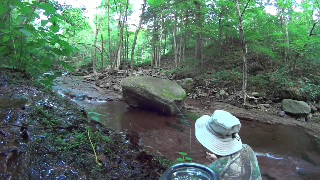 Catskills, NY, Biscuit Brook Fly fishing, map link below ...