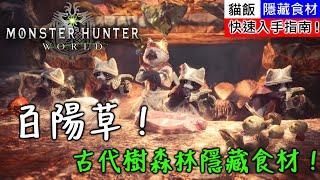 【MHW】古代樹森林隱藏食材!百陽草!快速入手指南!  魔物獵人世界