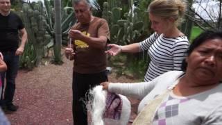 Путешествие по Мексике, часть 1