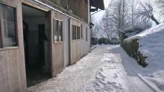 Heumilch - Winterzeit