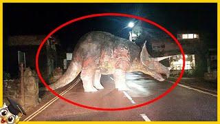 10 Wymarłych zwierząt, które ludzie uważają za wciąż żywe