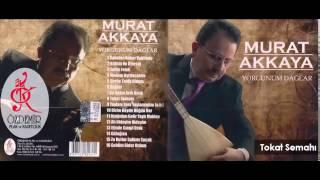 Tokat Semahı | Murat Akkaya Resimi