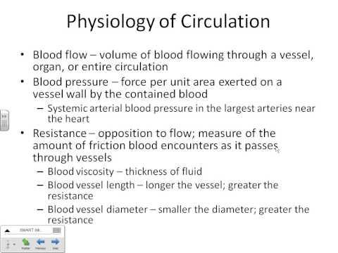 Blood Vessel Lecture part 1 Dr. Parker's A&P II