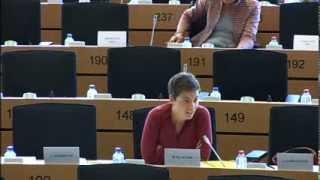 Warum wir Grüne gegen Smart Borders sind. | Ska im EU-Innenausschuss