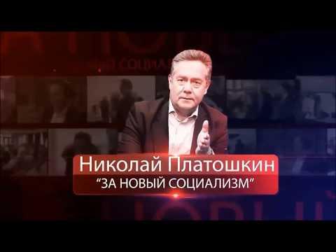 Н.Н. Платошкин: Итоги празднования 9 мая 2020 года