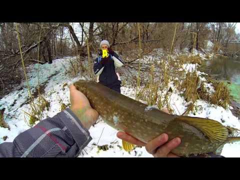 Ловля щуки зимой - спиннинг на малой реке
