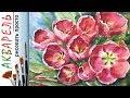 quot Тюльпаны Цветы к 8 марта quot как нарисовать АКВАРЕЛЬ Мастер класс ДЕМО