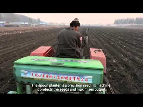 Agriculture in China   DuPont Chapter 1   Food is Heaven   YouTube