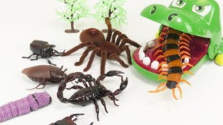 Giant Crocodile Eat Toy Cockroach Centipede Beetle Spider insect - BooBooToys