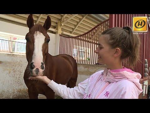 Конный спорт или зачем любить лошадок?