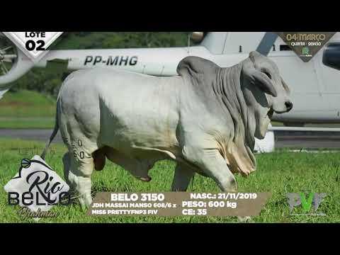 LOTE 02   BELO 3150