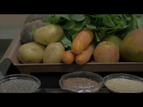 Raio X: Alimentos bons para a Digestão (25/05/17)