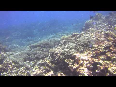 Seychellen - Fishermans Cove