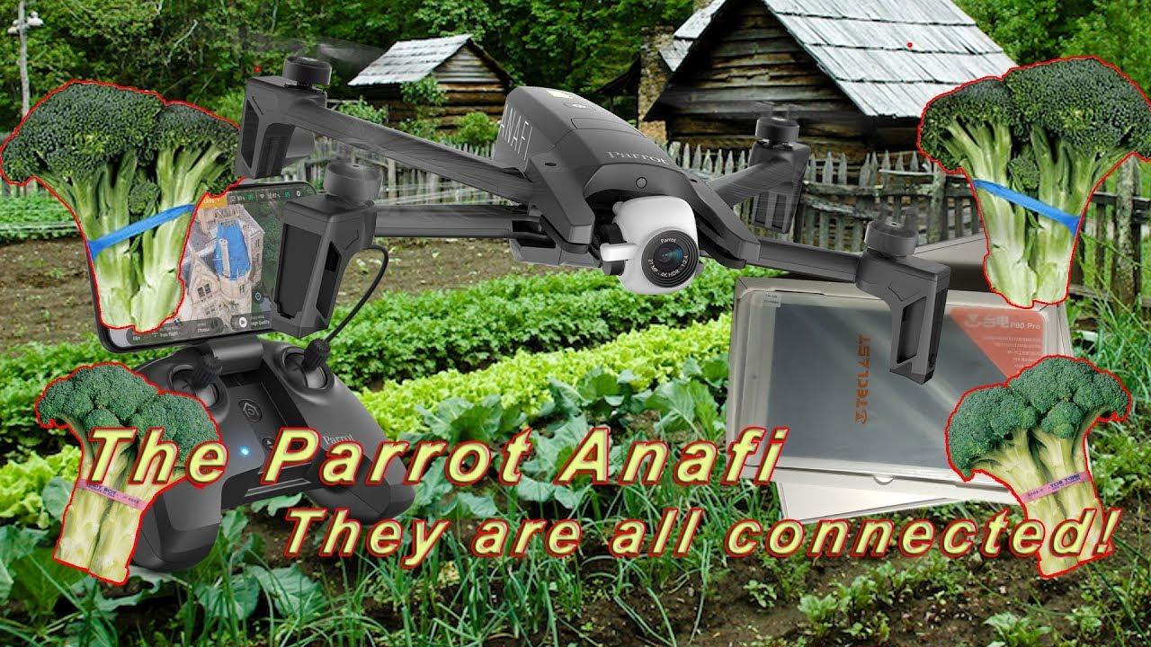 Parrot Anafi broccoli mod    who knew?
