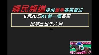 香港賽馬貼士   6月20日R1第一塲賽事 田草五班千六米    kennie yan#賽馬#賽馬貼士#加入會員月費計劃(市井喱民)