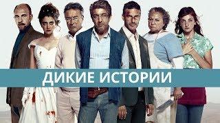 Дикие истории, Relatos salvajes, фильм 2014, триллер, драма, комедия