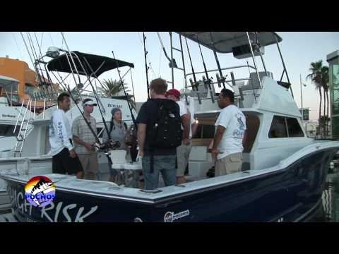 Sport Fishing Charters In Cabo San Lucas - Pochos Sport Fishing Fleet