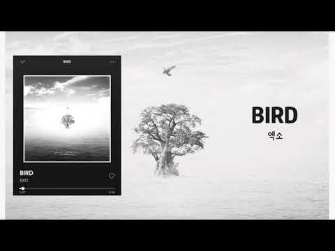 """엑소 EXO """"BIRD"""" FULL AUDIO"""
