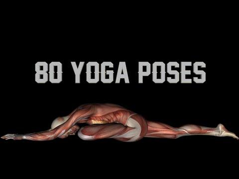80 yoga poses w/ names  black background  youtube