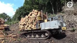 木質バイオマス燃料チップ製造過程の紹介