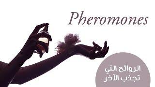 Pheromones الروائح التي تجذب الآخر