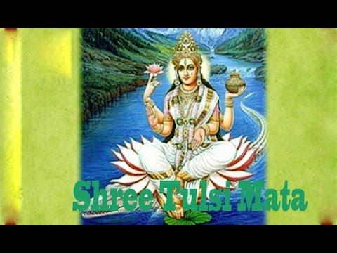 Shree Tulsi Mata Chalisa | Namo Namah Tulsi Maharani | Exclusive Song