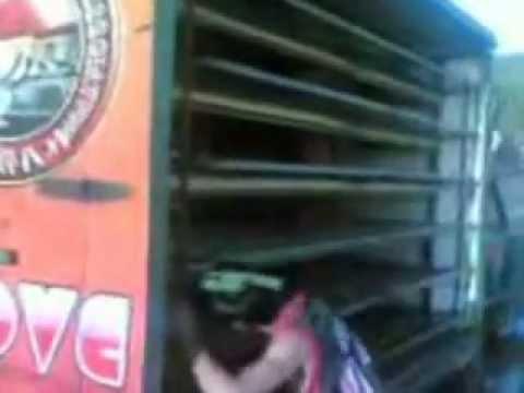Cavite Racing Pigeon Association.flv