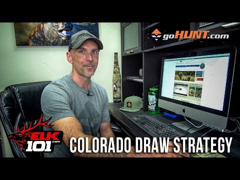Finding The Best Elk Hunting Units In Colorado